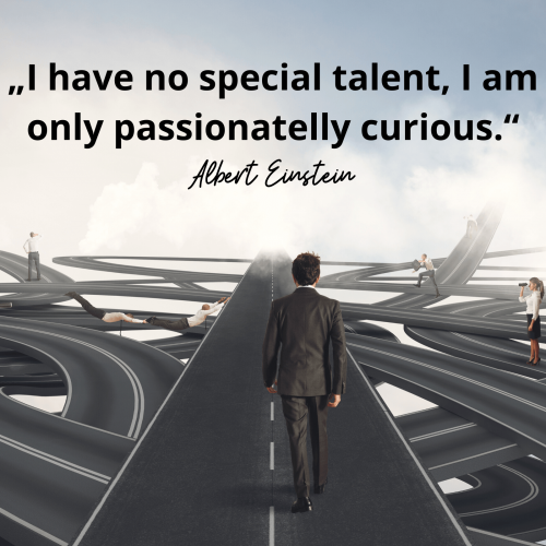 """I have no special talent, I am only passionatelly curious."" Albert Einstein"
